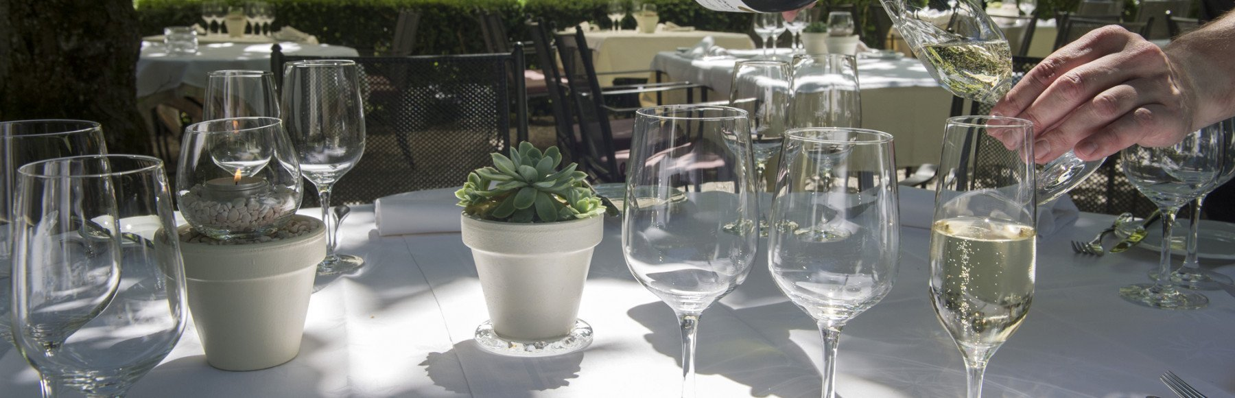 Table in the garden with glasses and sparkling wine
